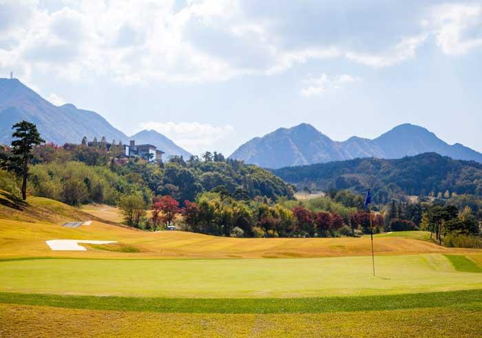 green_hoyo_golf